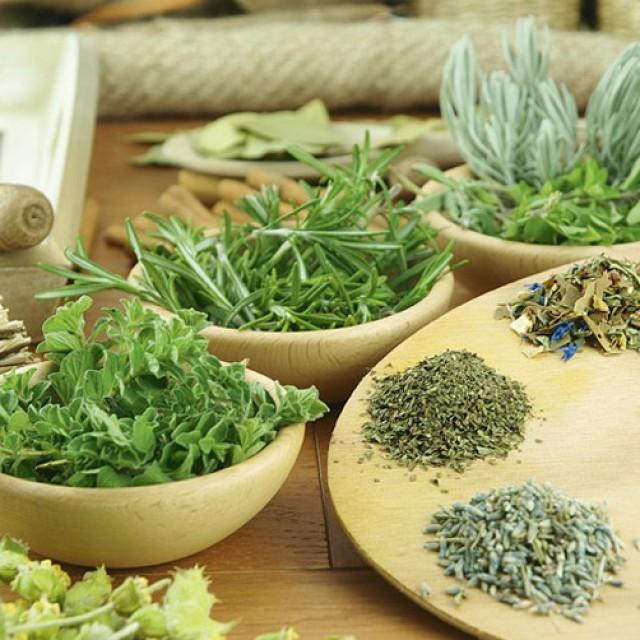 Эффективные травы для похудения, сжигающие жир помогут