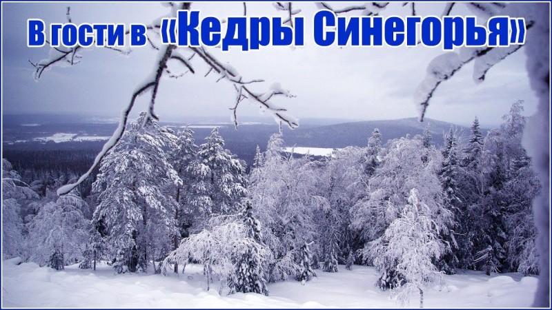 В гости в Поселение Родовых поместий Кедры Синегорья январь 2019