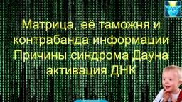 Матрица, её таможня и контрабанда информации. Причины синдрома Дауна, активация ДНК