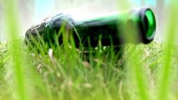 Владимир Борисов (ПОлюбоМУ) - Я ем траву по-новому :-)
