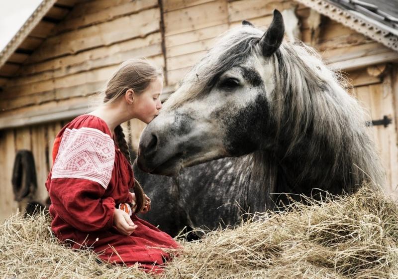 выйду ночью в поле с конем, красивое исполнение, женскими голосами, конь, Любэ