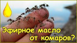 Эфирное масло гвоздика как средство от комаров