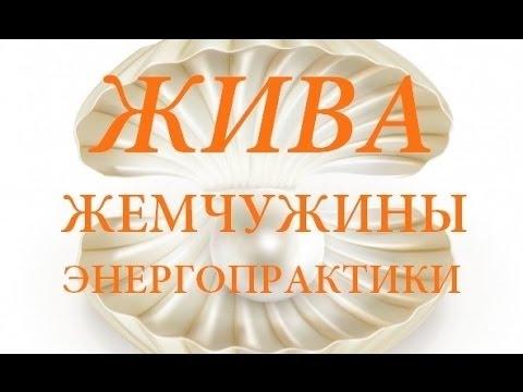 Жива-Жемчужины. Энергопрактики. Владимир Куровский