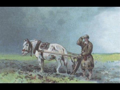 Русское земледелие и академик Николай Иванович Вавилов. Борис Володарский