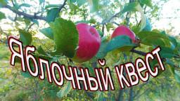 Яблочный квест