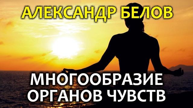 Александр Белов. Многообразие органов чувств