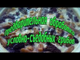Предварительная обработка условно - съедобных грибов