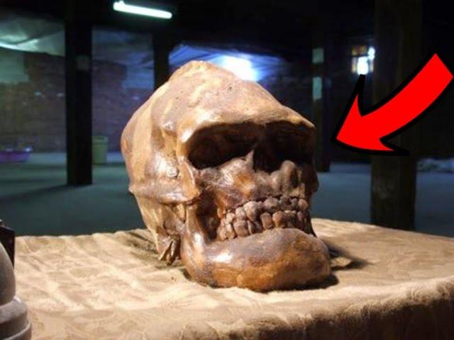 Почему эта находка испугала ученых и была засекречена Зачем скрывают могилу ВИЛИКАНА