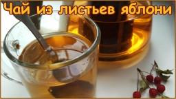 Чай из листьев яблони - ферментация и сушка