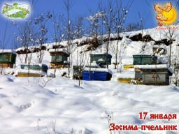 Братья месяцы   17-е января   Зосима-пчельник