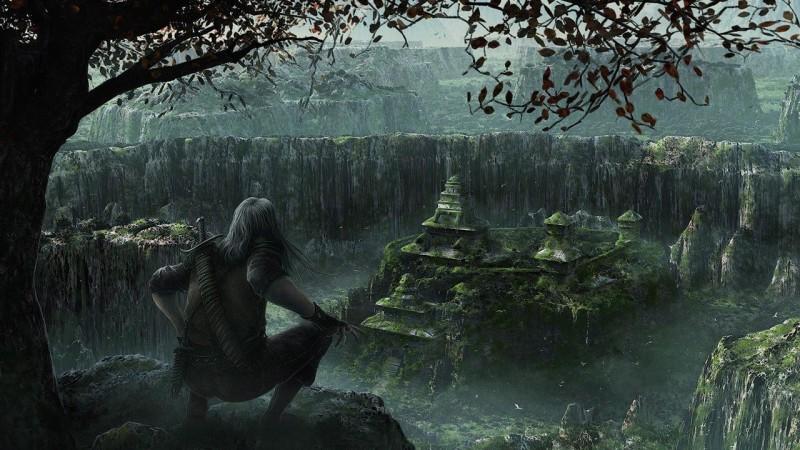 Сотовая Земля: « На земле лесов нет! »