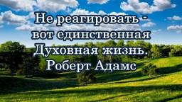 Не реагировать - вот единственная Духовная жизнь. Роберт Адамс