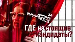 За ширмой выборов 2018. ГДЕ настоящие кандидаты?